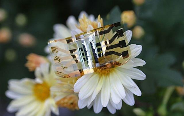 ساخت سلول خورشیدی برای نسل جدید ساعت هوشمند