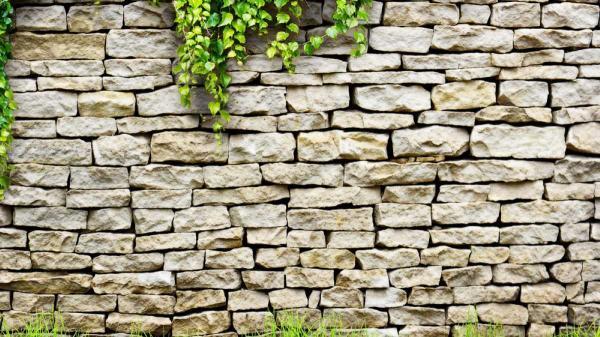 انواع دیوار کشی دور باغ : استفاده از چه مصالحی مناسب باغ شماست؟