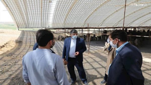 شروع عملیات پوشش سقف قسمت معبد محوطه باستانی شهریری مشگین شهر