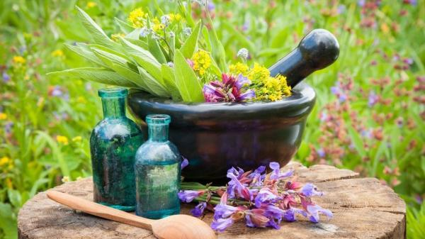 اعطای تسهیلات کم بهره به کشت گیاهان دارویی